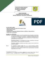 Cuadernillo11 NT2.Doc