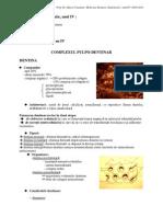 CURS1-Endodontie