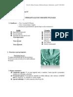 Curs 7-Endodontie