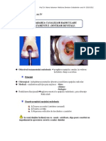 Curs 10-Endodontie