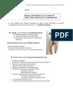 Curs 13-Endodontie
