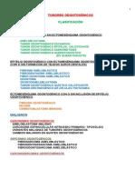 Guia 13 Tumores Odontogenicos1