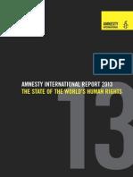 Amnesty International Annual Report 2013