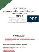 6.1.HOMEOSTASIS-Regulaciones Endocrinas Nerviosas y Neuroendocrinas-PARTE 1.ppt