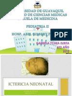 ictericianeonatalcasomaspresentacion-120914112244-phpapp02