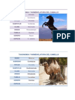 taxonomiaynomenclaturas-130709153637-phpapp01
