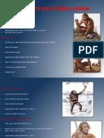 Teorii Privind Evolutia Omului