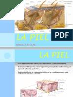 Patologias de La Piel. Ninoska.....