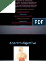 Sistema Digestivo Ariana Aileet Salazar Zavala (1)