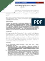 08 Enfermedad Crónica Obstructiva Pulmonar en Equinos