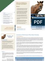 Performance Equine Dentistry Brochure