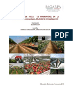 2014SGP0002 Pry Fresa 15 ha en Macrotunel Maravatio 1.docx