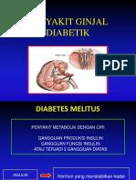 Nephropathy Diabetic Persadia