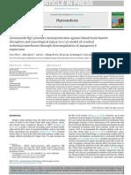 Ginsenoside Rg1 Provides Neuroprotection Against Blood Brain Barrier