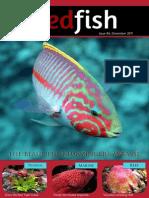 Redfish Magazine 2011 December