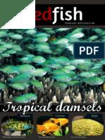 Redfish Magazine 2012 February