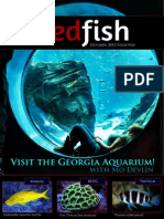 Redfish Magazine 2012 October