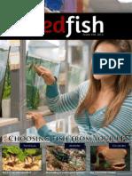 Redfish Magazine Issue 18