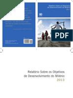 Relatório ONU_ODM_2013