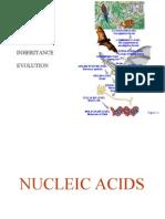 DNA.bio 2.2014
