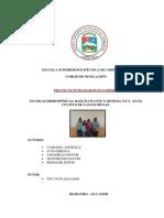Cultivo hidropónico NFT.docx