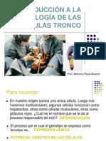 2.1.9-10 Células Tronco (2012)