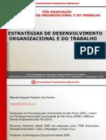 ESTRATÉGIAS DE DESENVOLVIMENTO ORGANIZACIONAL E DO TRABALHO AULA 1