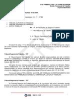 Direito Processual Do Trabalho Material Suplementar Aula 1 a 10