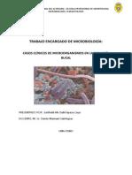 TRABAJO ENCARGADO DE MICROBIOLOGÍA