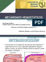 X Mecánismos Hemostáticos 12-FEB-14