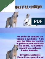 Perro y El Conejol