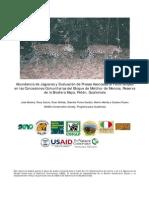 Abundancia de jaguares y evaluación de presas asociadas al fototrampeo en las Concesiones Comunitarias del Bloque de Melchor de Mencos