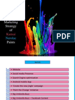 Kansai Nerolac Paints - Digital Marketing