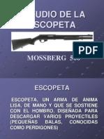 Estudio de La Escopeta