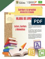 primariacdia-140114190541-phpapp02