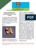 PACERIZU-ARTÍCULOS EFECTOS MÉDICOS DE LA CONTAMINACIÓN INTERNA POR URANIO