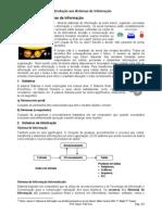 O' BRIEN, James A. Sistemas de Informação e as Decisões Gerenciais na Era da