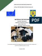 Tehnologia cresterii porcinelor