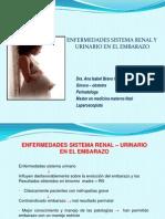enfermedadesdelsistemarenal-28febrero2013-130312164955-phpapp02