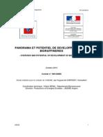 bioraffinerie2010-110805020509-phpapp01