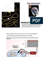 2.Bioeletrogenesesilvia