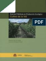 Cultivo de V
