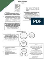 Marco Conceptual y Componentes PNFP Corregido