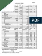 2013 Annual Financial Report file
