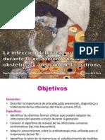 infeccindeltractourinarioygestacin-130308054928-phpapp02