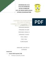 Neuroanatomia LCR YOSELIN Definitivo