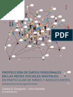Protec c i on Redes Social Es