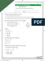evaluacion_desempeno_1_11