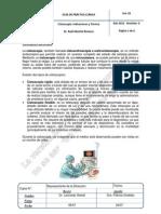 Uro 18 Cistoscopia Indicaciones y Tecnicas_v0 12