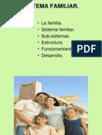 4_Sistema Familiar Estructura y Funcionamiento
